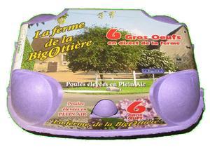Boîte de 6 oeufs de la Bigottière